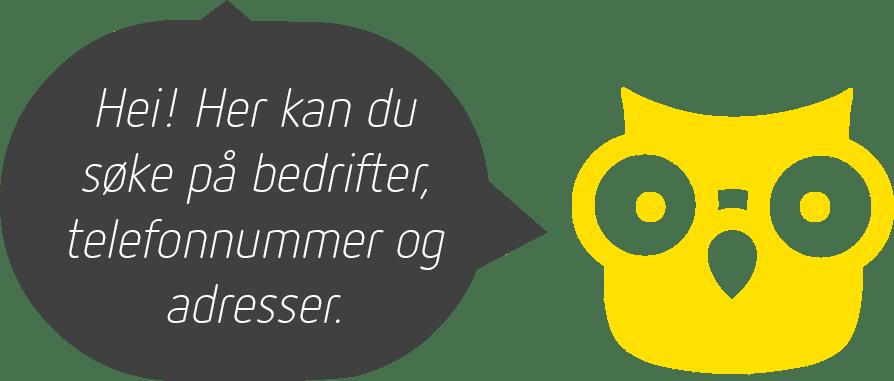 En gul ugle med en prateboble med teksten: Hei! Her kan du søke på bedrifter, telefonnummer og adresser.